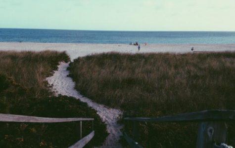 Summer Destinations