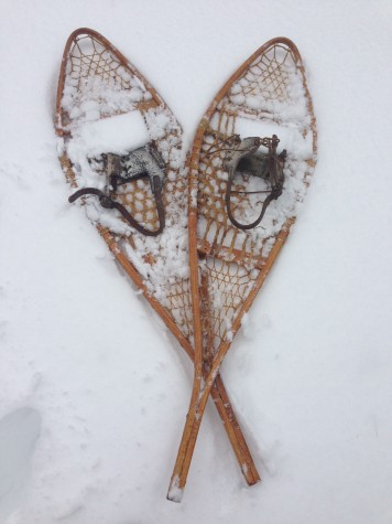 A pair of authentic Beaver Tail snowshoes in good, usable condition. Made in 1948.