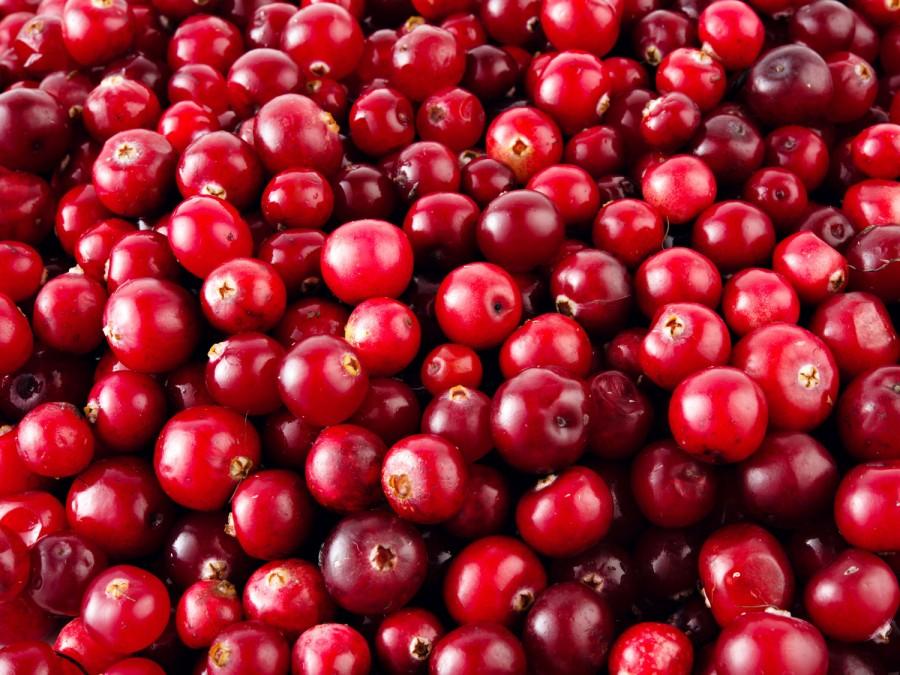 Fresh+cranberries+