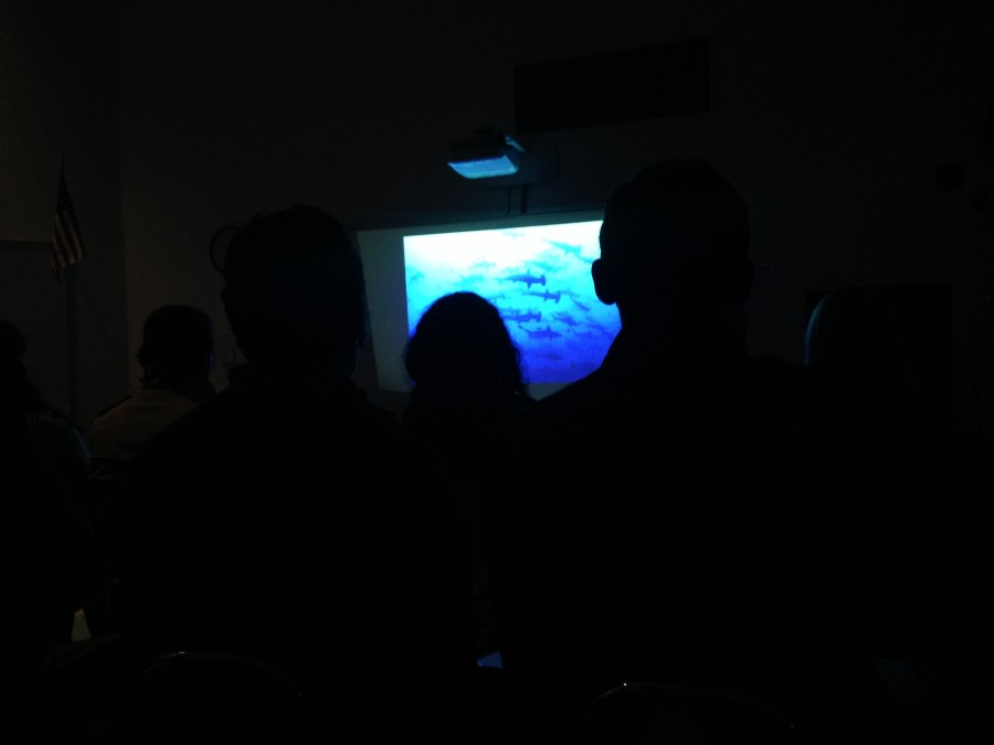 Members of the Green Team attentively watch the night's feature film