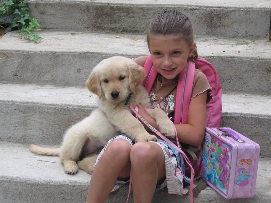 Claire starts off kindergarten with her puppy Molly.