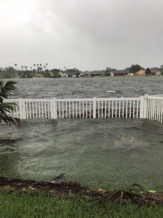 Ocean water that flooded into Kaitlin's backyard, taken minutes after Hurricane Irma passed.
