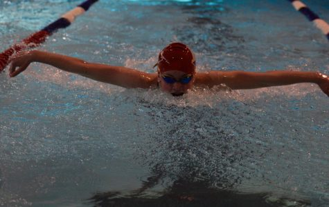 Hingham High Swim Team Places Second in Patriot League