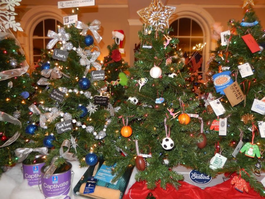 Many trees are on display at the festival of the trees in the Old Derby Academy.