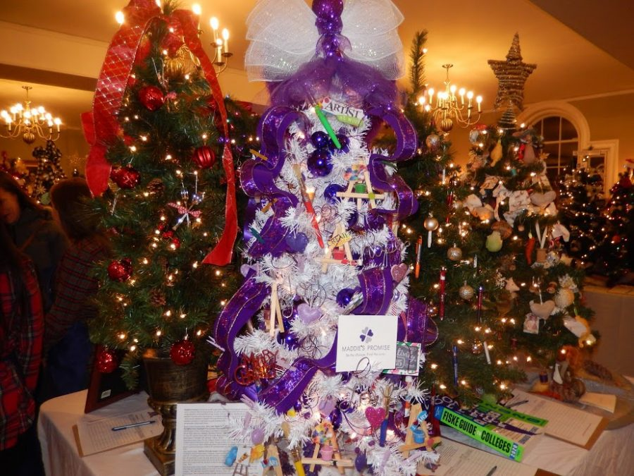 At the Festival of the Trees, people had the opportunity to bid on a tree that gives a donation to Maddie's Promise.