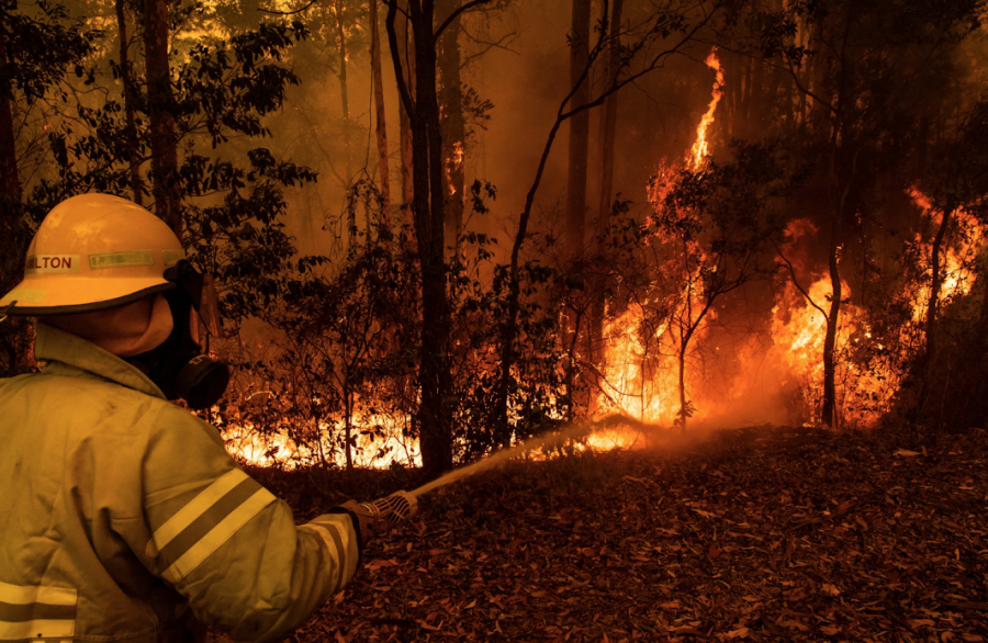Both professional and volunteer firefighters have been risking their lives to put out the fires in Australia.