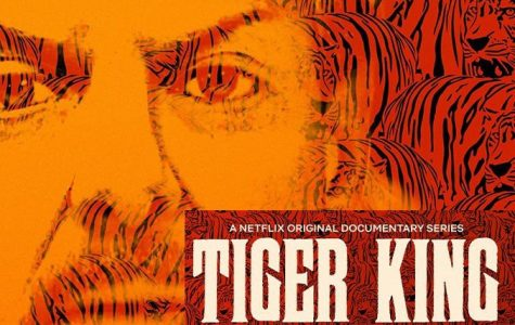 Tiger King has become a countrywide sensation, awarding it the top Netflix show in the U.S.