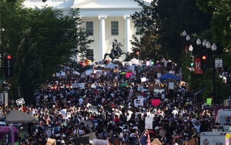 Protests gather outside of the White House in Washington DC.