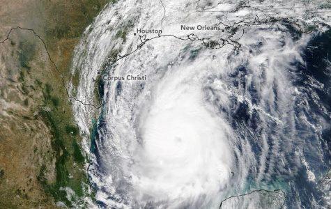 Hurricane Delta moves towards Louisiana on October 8, as a Category 2 storm.