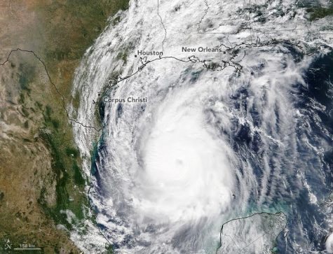 Hurricane Delta moves towards Louisiana on October 8, as a Category 2 storm.