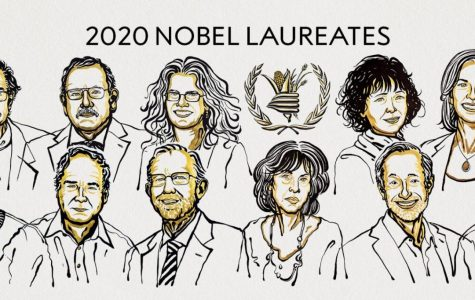 The 2020 Nobel Laureates across the Prize's six categories were honored in a virtual ceremony this past week.