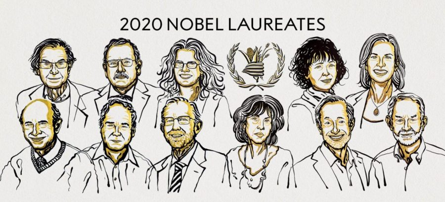 The 2020 Nobel Laureates across the Prize