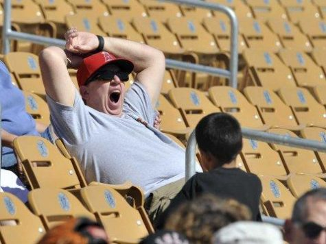 Here is a look at a fan yawning while in attendance of 3 hour and 28-minute long game that featured a 1-0 win by the Tampa Bay Rays over the New York Yankees.