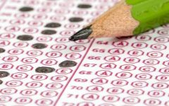 Navigation to Story: MCAS: Juniors' Opinions on Optional Testing